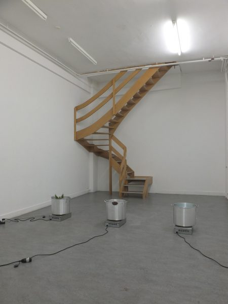 ELUSIVE EARTHS <br>CURATED BY JENNIFER TEETS ELUSIVE EARTHS - 
