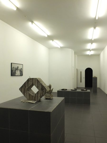ELUSIVE EARTHS <br>CURATED BY JENNIFER TEETS ELUSIVE EARTHS